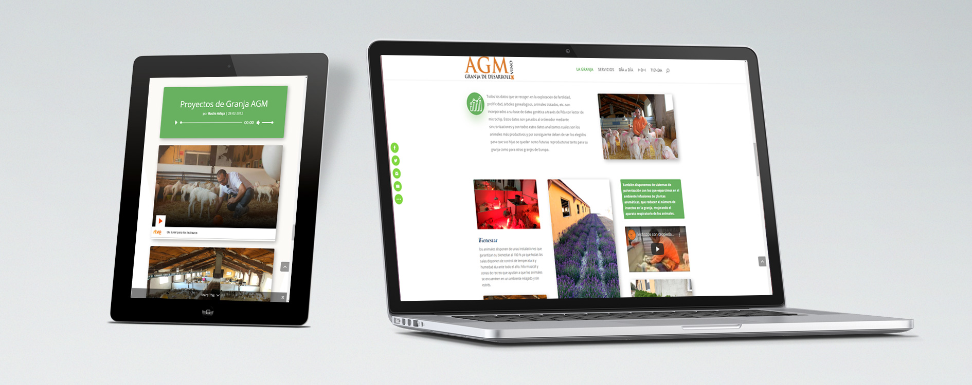 Desarrollo web Granja AGM